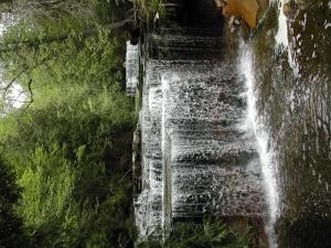Cannings Falls on the Niagara Escarpment